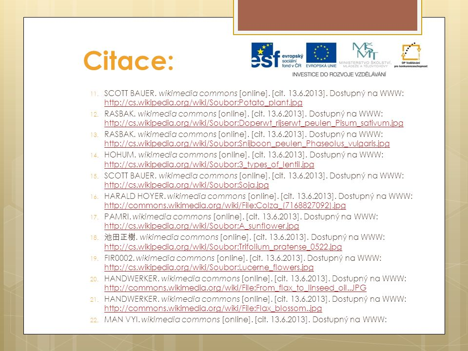 Citace: SCOTT BAUER. wikimedia commons [online]. [cit. 13.6.2013]. Dostupný na WWW: http://cs.wikipedia.org/wiki/Soubor:Potato_plant.jpg.